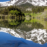 reflections mount tallac lake tahoe fling leaf california