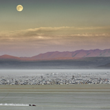 moon rise burning man black rock desert nevada great basin