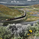 Ttrain heading towarde Palisade along Humboldt River Nevada Great Basin